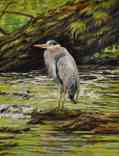 Heron in Green Water